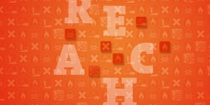 Meeting the challenges of REACH