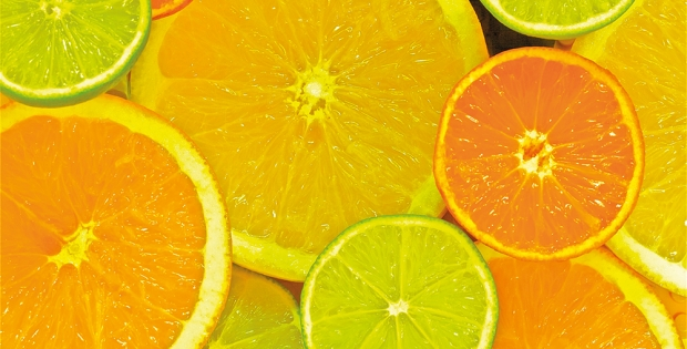 Company takes on threat to the citrus industry
