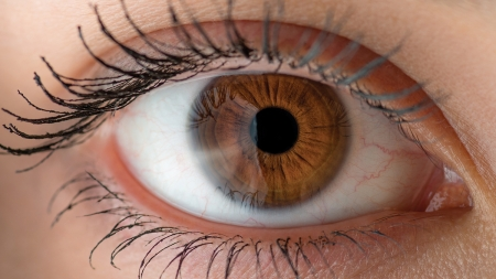 Chemist's work offers hope for people suffering sight problems.