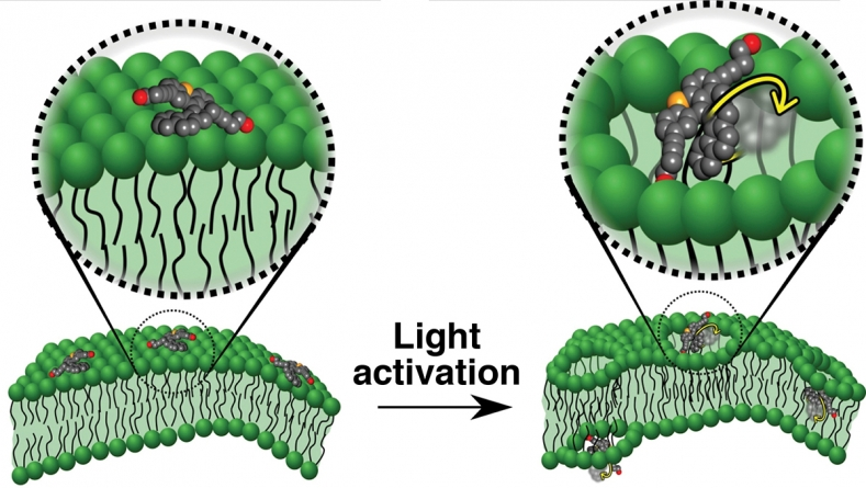 Team uses light to drill holes in membranes