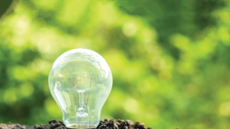 Report highlights green impact