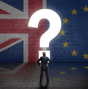 ECHA to extend Brexit Window beyond end of March
